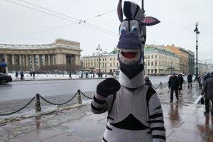 В центре Петербурга аниматоры в костюмах животных вымогают деньги за фото. Кто ими руководит и сколько они зарабатывают