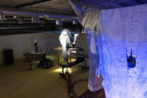 На Петроградской стороне арт-группа «Север-7» открыла галерею в подвале. Вот как она выглядит