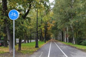 Шесть парков в Петербурге планируют соединить велодорожками