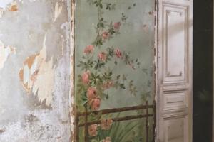В Петербурге в коммунальной квартире XIX века нашли росписи в китайском стиле