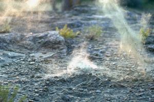 В Петербурге снова очень пыльно. Как спасти квартиру от грязи и защитить от песка нос и глаза?