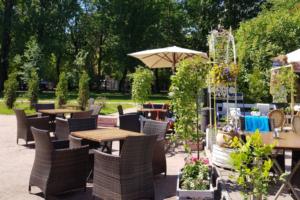 Кафе в саду «Василеостровец», где вы будете обедать драниками и похмельными щами в компании кота Соломона 🐈