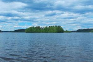 Где можно купаться в Ленобласти летом 2019 года? Интерактивная карта «Бумаги»