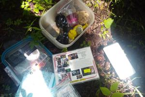 Петербуржец нашел в лесу тайник с картой, монетами и игрушками. Оказалось, с его помощью путешественники 14 лет обмениваются вещами