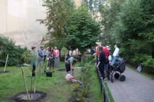 Активисты вместе с местными жителями озеленили двор на Васильевском острове. Они высадили там шаровидные ивы и кусты шиповника