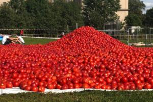 В соцсетях критикуют прошедшую в Петербурге битву помидорами — за тонны испорченной еды. Организаторы говорят, что использовали непригодные для пищи томаты