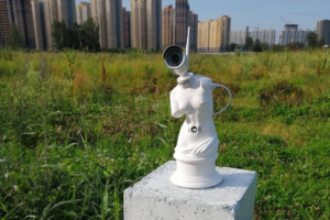 В Петербурге появилась инсталляция «Венера Парнасская» с видеокамерой вместо головы