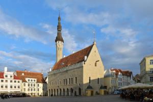В Петербурге растет спрос на эстонские визы. За год — на 10 %