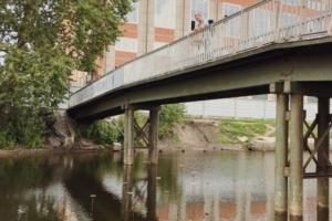 На реке Пряжке установили зеркальные подсолнухи. Арт-объект создал местный художник