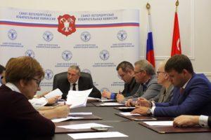 Глава ЦИК выступила за отставку членов избирательной комиссии Петербурга