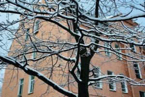Почему в Петербурге выпал снег в октябре и когда придет настоящая зима? Рассказывает главный синоптик города