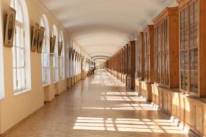 Переезд СПбГУ в Пушкинский район вызвал много вопросов: где будут жить сотрудники, все ли факультеты переедут, что ждет здания в центре. Вот что ответили в вузе