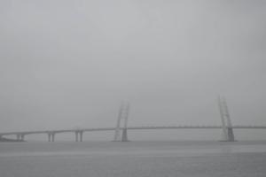 Утром в Петербурге и Ленобласти был слабый туман. Некоторые успели его сфотографировать! 🌁