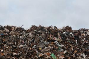 Смольный отложил еще на год мусорную реформу, вводящую раздельный сбор в Петербурге