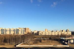 Защитники Муринского парка передали в Смольный более 6 тысяч подписей против его застройки