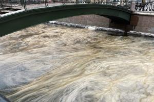 Петербургские реки напоминают картины Ван Гога — всё из-за ледяного сала! Полюбуйтесь водой с ледяными кристаллами