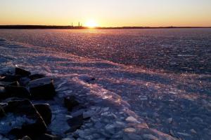 Финский залив сковало льдом — теперь берег называют пустыней камней и другой планетой. В лучах солнца это особенно красиво!