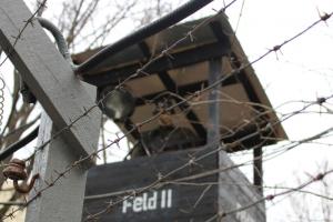 В Петербурге открылся Музей памяти жертв нацизма. Среди экспонатов — личные вещи заключенных из Освенцима и Майданека