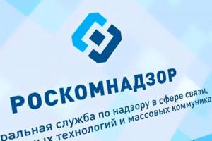 Роскомнадзор заблокировал сайт противников поправок к Конституции