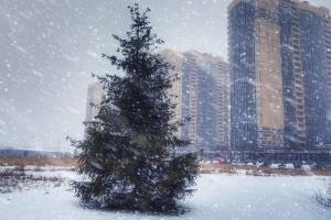 «Весна с зимой решили поменяться местами»: как 1 марта в Петербурге пошел сильный снегопад