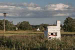 В Ленобласти посреди поля стоят русские печи. Они остались на месте деревни, сожженной во время войны