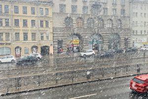 «Вот так прощается зима с нами». 10 фото и видео апрельской метели в Петербурге
