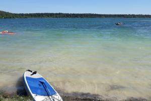 В каких водоемах Ленобласти можно купаться этим летом? Роспотребнадзор опубликовал список