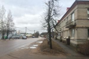 Студента из Ленинградской области обвиняют в попытке поджога избирательного участка. Возбуждено уголовное дело