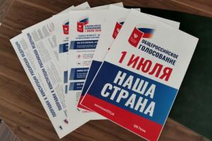 В Петербурге на 29 участках большинство избирателей выступили против поправок. На одном УИК — более 97 % голосов «против»