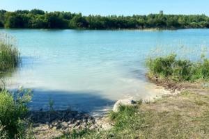 Лазурная вода, белый песок — а еще горы мусора, многометровые пробки и змеи 😱 Так этим летом выглядит озеро Донцо в Ленобласти, которое называют местными Сейшелами