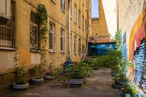 На Петроградской есть секретный двор с садом, который благоустроила блокадница Нина Васильевна. После ее смерти за ним следят соседи