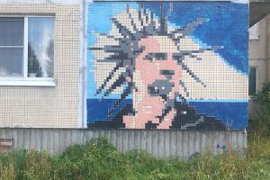 На панельных домах в поселке Елизаветино под Гатчиной разместили портреты рок-музыкантов. Стрит-арт создал трубочист Эрмитажа