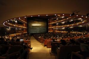 Не менее двух артистов балетной труппы Мариинского театра заразились COVID-19, сообщил Гергиев