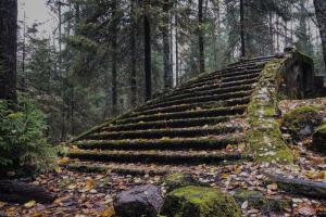 Осмотрите руины старых финских дач в Заходском. И отыщите в лесу парадную лестницу, ведущую в никуда