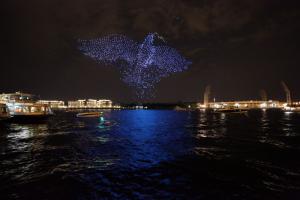 В Петербурге с помощью 2 тысяч дронов показали фигуру голубя мира в небе. Это часть фестиваля беспилотников