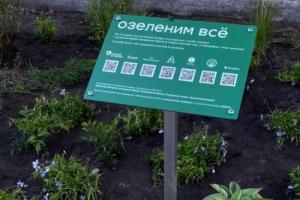 Фонд «Зеленый Петербург» высадил сотни многолетних растений в сквере на улице Марата