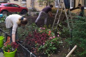 Петербуржцы убрались и посадили многолетние растения во дворе на Загородном проспекте