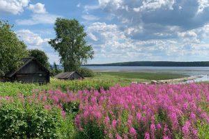 Что посмотреть на Русском Севере за выходные. Маршрут из Петербурга — город с финской архитектурой и деревня из «Калевалы»