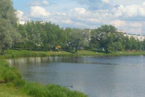 Смольный продлил компании «Анна Нова» аренду участка в Муринском парке до августа 2024 года, сообщают активисты