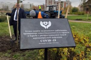 На севере Петербурга открыли аллею памяти погибших во время пандемии медиков
