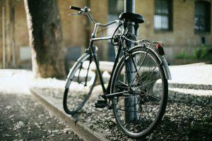Шесть вариантов для велопрогулки по Петербургу и Ленобласти — от тихого маршрута за Московским вокзалом до поездки через сосновый лес