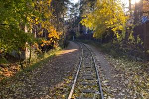 Вы знали, что в Петербурге есть детская железная дорога? Школьники работают там проводниками и машинистами
