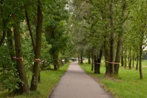 Беглов предложил сократить парк Интернационалистов почти на гектар из-за реконструкции Южного шоссе. Местные жители собрали более 2 тысяч подписей против этого