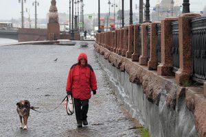В Петербурге — новый температурный рекорд. Будет ли конец ноября таким же теплым и чего ждать от зимы? Отвечает главный синоптик города