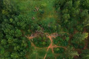 В Английском парке в Петергофе есть руины дворца, который разрушили во время войны. Вот как они выглядят с высоты