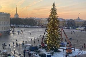 Новогоднюю ель на Дворцовой называли «облезлой» и критиковали за дороговизну. Дерево украсили гирляндой — и теперь им многие восхищаются