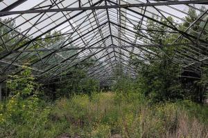 Смольный и «Газпром» подписали соглашение о реконструкции оранжерей Таврического сада. Их хотят открыть для посетителей не позднее 2025 года