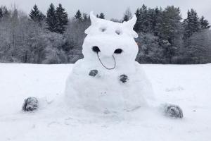 Русалка, бык и Эльза из «Холодного сердца». Посмотрите, каких необычных снеговиков лепят в Петербурге и Ленобласти