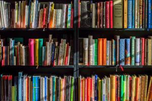 Ко Дню науки в открытом доступе появилось более 40 научно-популярных книг. Деньги на покупку авторских прав собирали через краудфандинговую платформу
