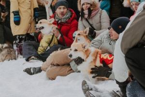 В парке 300-летия Петербурга в воскресенье собралось около ста корги. Некоторые из них были в смешных костюмах😱